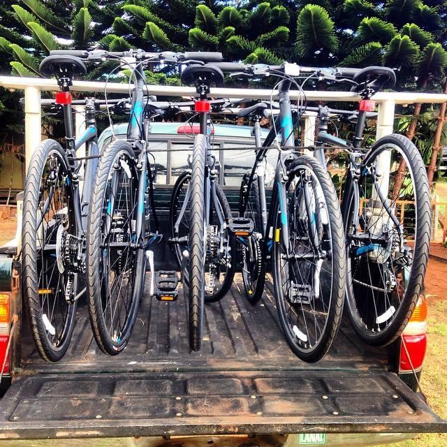 Photo of bicycles in bike rack.
